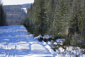 Alberta pipeline clearing services