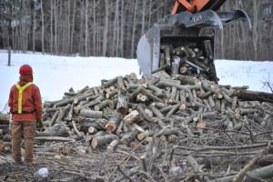 Oilfield Pipeline Clearing Alberta